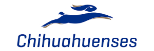 pasajes en micro con la empresa Chihuahuenses