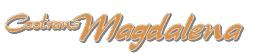 pasajes en micro con la empresa Cootrans Magdalena