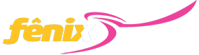 pasajes en micro con la empresa Rapido Fenix
